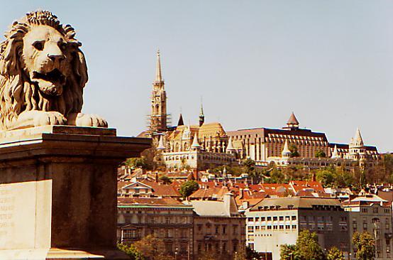 Møt kvinnene i Budapest